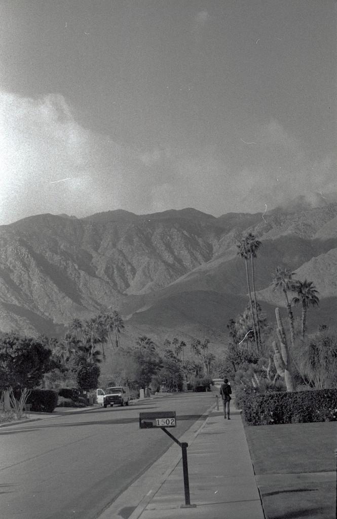 Palm Springs_1
